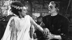 Read Bride of Frankenstein